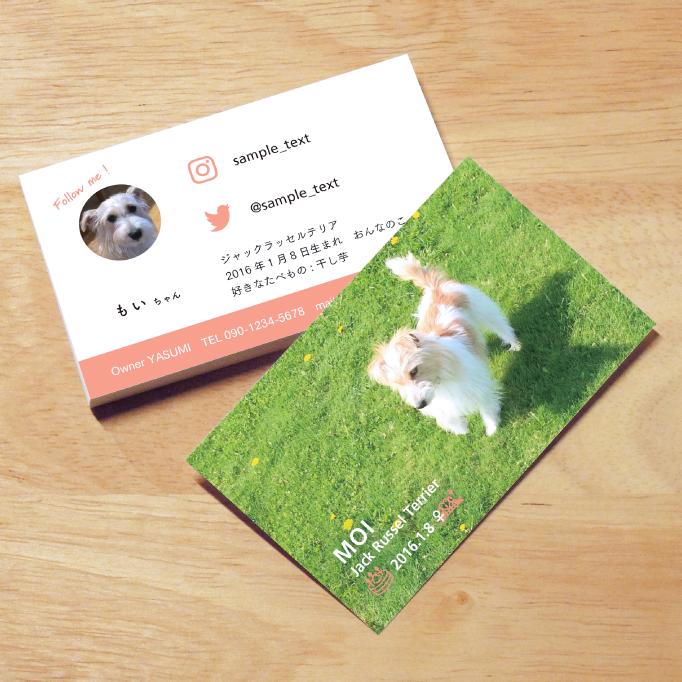 SHIKKAのうちの子カード。大切なペットのかわいい名刺。