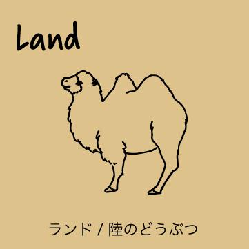 SHIKKAのブローチ。LANDランドシリーズ、陸で暮らす動物がモチーフのブローチ。